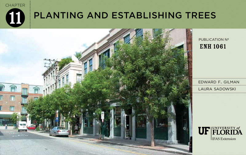 UF-IFAS: Planting and EstablishingTrees