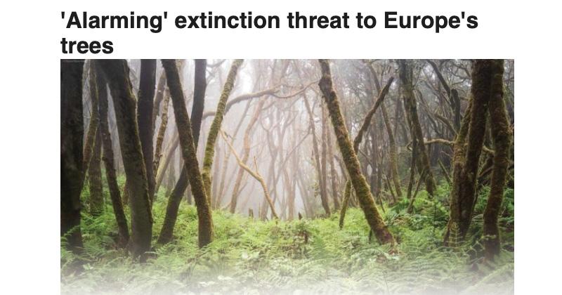 BBC News: 'Alarming' extinction threat to Europe'strees
